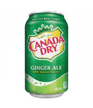 Drink Canada Dry Ginger Ale 330 ml
