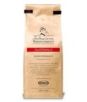Coffee Selezione Domenico Bristot Guatemala 250g